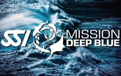MISSION DEEP BLUE SSI – PLASTIC FIGHTER