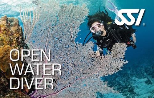OPEN WATER DIVER - Cursos VELLMARI