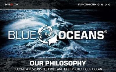 BLUE OCEANS SSI – PLASTIC FIGHTER